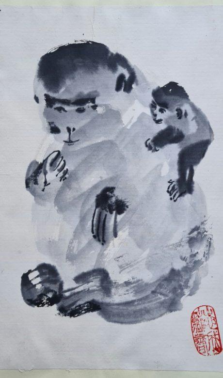 JWE224-Guenon et guenuche